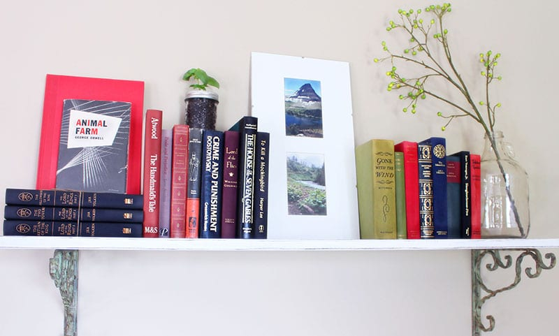 Small home library using a shelf lined with classic novels.