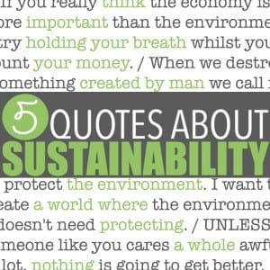 Five sustainability quotes superimposed over images of mountains, forests and a child hugging a very large tree. Cheesy? Perhaps. True? Hell yes. But hopefully they help inspire you to incorporate a few green living tips into your life.