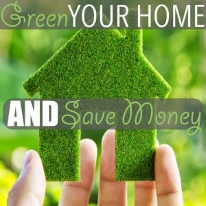 Here are five green living tips you can practice in your home that will also save you a few dollars, including shopping secondhand, cleaning with vinegar and... sharing!
