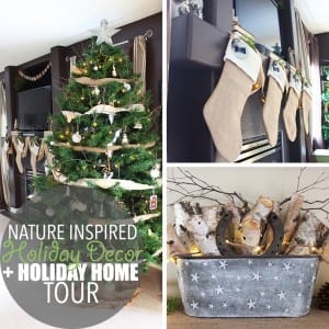 Nature Inspired Holiday Decor by Of Houses and Trees   Nature inspired holiday decor is an eco-friendly way to create a feeling of calm beauty in your home. It's like walking through the woods on a winter day.