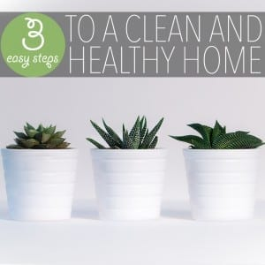 Whether you want to protect your family from chemicals or to do your part in adopting green living tips as your own - these are both great reasons to create a healthy home!