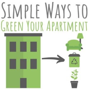 Greening an apartment isn't all that different from greening a house. Check out these green living tips that are simple, affordable - and fun!