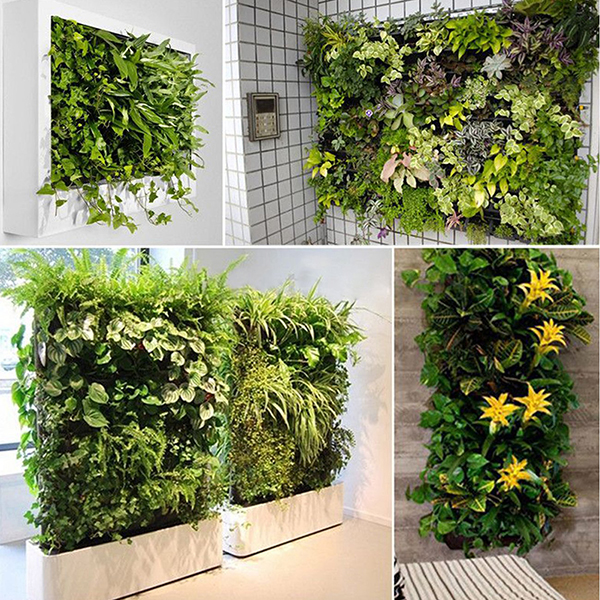 Greening an apartment isn't all that different from greening a house. Try out these eco-friendly apartment ideas, such as a vertical garden. It's a great way to grow your own organic food - all while helping to purify your apartment's air.
