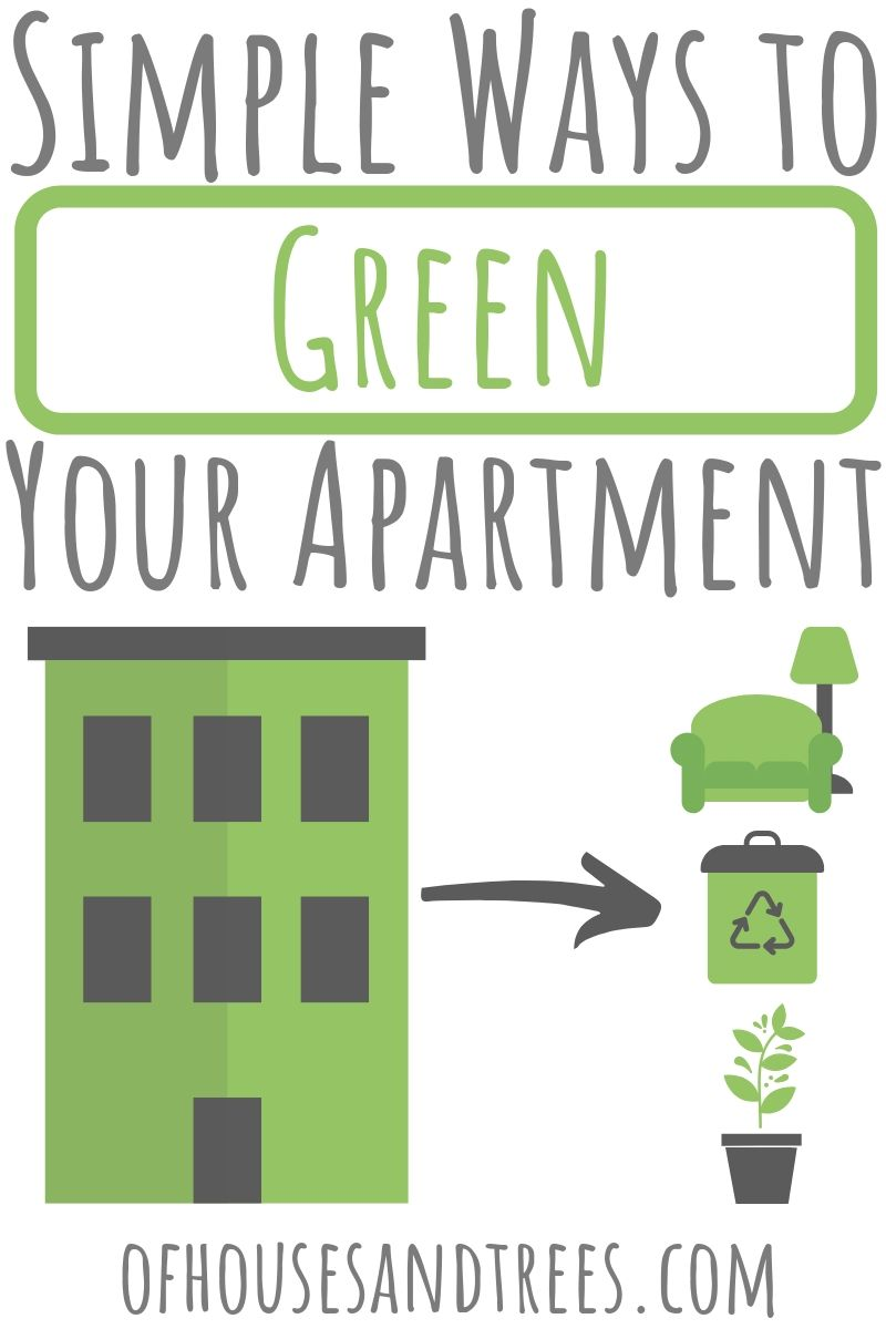 Greening an apartment isn't all that different from greening a house. Check out these eco-friendly apartment ideas that are simple, affordable - and fun!
