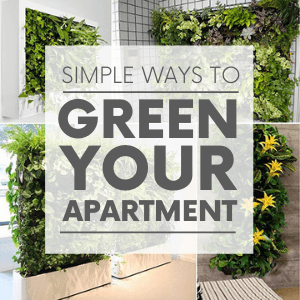 """Various images of indoor wall gardens with the words """"simple ways to green your apartment."""" Click to visit post."""